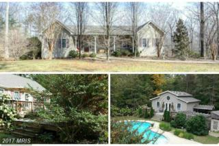 254 Spotted Tavern Road, Fredericksburg, VA 22406 (#ST9867864) :: Pearson Smith Realty