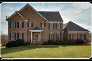 80 Chriswood Lane, Stafford, VA 22556 (#ST9867950) :: LoCoMusings