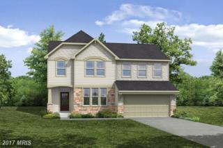 Cutstone Drive, Stafford, VA 22554 (#ST9868571) :: LoCoMusings