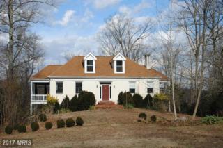65 Osprey Lane, Fredericksburg, VA 22405 (#ST9868578) :: Pearson Smith Realty