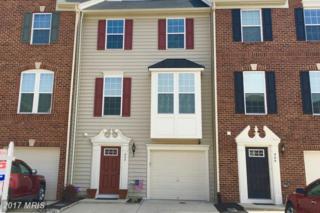 302 Spring Park Lane, Fredericksburg, VA 22405 (#ST9868628) :: Pearson Smith Realty