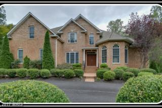 11 Winning Colors Road, Stafford, VA 22556 (#ST9869089) :: Pearson Smith Realty