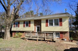 328 Via De Rosa Drive, Stafford, VA 22556 (#ST9871799) :: Pearson Smith Realty