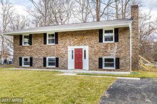 18 Clarion Drive, Fredericksburg, VA 22405 (#ST9872012) :: LoCoMusings