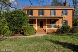 19 Tally Ho Drive, Fredericksburg, VA 22405 (#ST9879013) :: Pearson Smith Realty