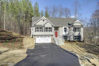 121 Ruby Glen Lane, Fredericksburg, VA 22405 (#ST9879231) :: LoCoMusings