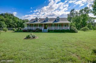 26 Lake Drive, Stafford, VA 22554 (#ST9879561) :: Pearson Smith Realty