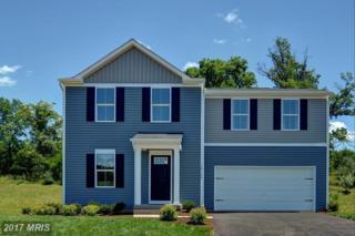 1001 Taylors Hill Way, Fredericksburg, VA 22405 (#ST9880289) :: LoCoMusings