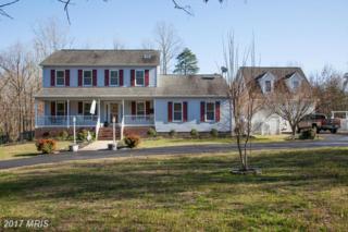 14 River Ridge Lane, Fredericksburg, VA 22406 (#ST9885363) :: LoCoMusings