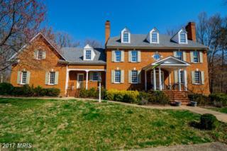 217 Lake Shore Drive, Fredericksburg, VA 22405 (#ST9886366) :: Pearson Smith Realty