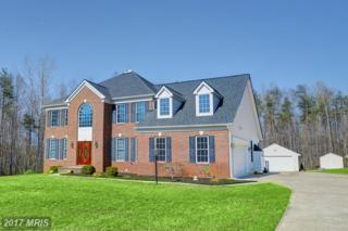 24 Kestral Lane, Fredericksburg, VA 22406 (#ST9891811) :: Pearson Smith Realty