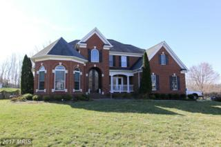 1 Toliver Lane, Stafford, VA 22554 (#ST9892391) :: Pearson Smith Realty