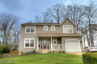 38 Clarion Drive, Fredericksburg, VA 22405 (#ST9903268) :: Pearson Smith Realty