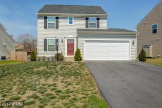 12 Taylors Hill Way, Fredericksburg, VA 22405 (#ST9903432) :: Pearson Smith Realty