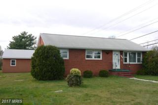 819 Culpeper Street, Fredericksburg, VA 22405 (#ST9904003) :: Pearson Smith Realty