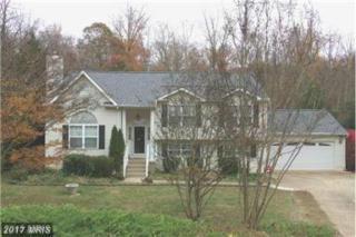 13 Howard Circle, Fredericksburg, VA 22405 (#ST9905833) :: LoCoMusings