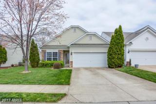 4 Bluefield Lane, Fredericksburg, VA 22406 (#ST9906292) :: Pearson Smith Realty