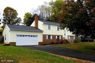 95 Vista Woods Road, Stafford, VA 22556 (#ST9910943) :: Pearson Smith Realty