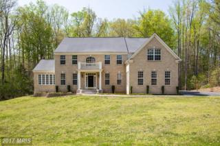 48 Falling Creek Drive, Stafford, VA 22554 (#ST9914246) :: Pearson Smith Realty