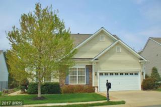 16 Goose Creek Circle, Fredericksburg, VA 22406 (#ST9917388) :: Pearson Smith Realty