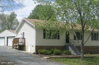 115 Vista Woods Road, Stafford, VA 22556 (#ST9920454) :: Pearson Smith Realty