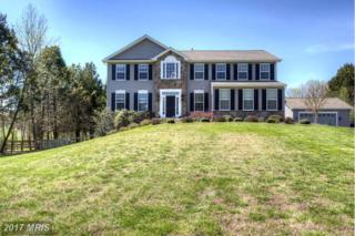 1317 Mountain View Road, Stafford, VA 22554 (#ST9923823) :: Pearson Smith Realty