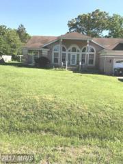 28 Pointe Lane, Fredericksburg, VA 22405 (#ST9924881) :: Pearson Smith Realty