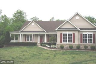 325 Gentle Breeze Circle, Fredericksburg, VA 22406 (#ST9927131) :: LoCoMusings
