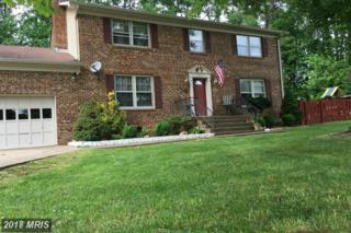 68 Green Leaf Terrace, Stafford, VA 22556 (#ST9927138) :: Pearson Smith Realty
