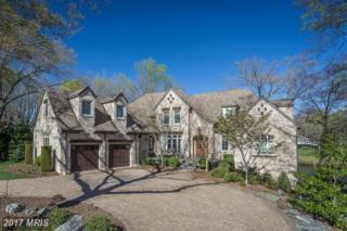 121 Lake Shore Drive, Fredericksburg, VA 22405 (#ST9928091) :: Pearson Smith Realty