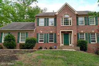 72 Cool Breeze Way, Fredericksburg, VA 22406 (#ST9928121) :: Pearson Smith Realty