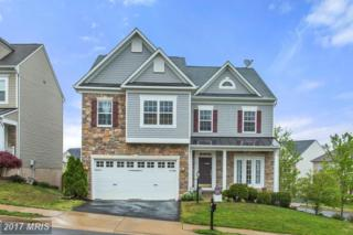 66 Carriage Hill Drive, Fredericksburg, VA 22405 (#ST9928881) :: Pearson Smith Realty