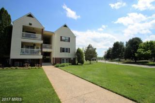 100 Chesterfield Lane #203, Stafford, VA 22556 (#ST9932390) :: Pearson Smith Realty