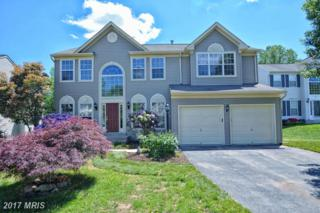25 Watermill Court, Stafford, VA 22554 (#ST9937530) :: Pearson Smith Realty