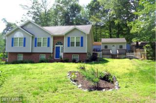 1609 Sherwood Drive, Fredericksburg, VA 22405 (#ST9937630) :: Pearson Smith Realty