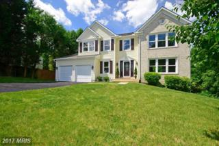 51 Puri Lane, Stafford, VA 22554 (#ST9939869) :: Pearson Smith Realty