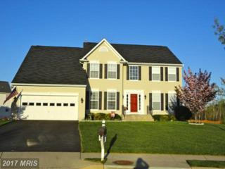19 Saint Claires Court, Stafford, VA 22556 (#ST9944590) :: Pearson Smith Realty