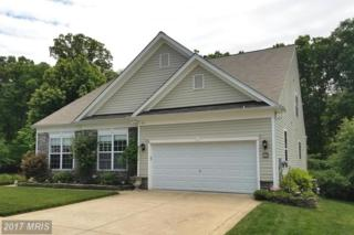 50 Goose Creek Circle, Fredericksburg, VA 22406 (#ST9944859) :: Pearson Smith Realty