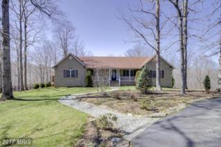 83 Lady Jessica Lane, Fredericksburg, VA 22406 (#ST9946680) :: Pearson Smith Realty