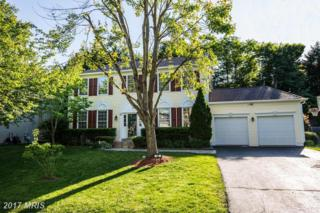 62 Blossom Wood Court, Stafford, VA 22554 (#ST9947939) :: Pearson Smith Realty