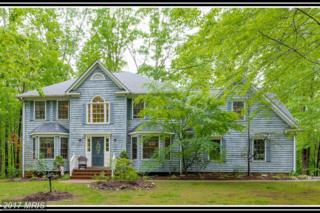 90 Wateredge Lane, Fredericksburg, VA 22406 (#ST9948732) :: Pearson Smith Realty