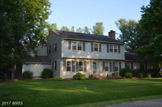 7 Steeplechase Road, Fredericksburg, VA 22405 (#ST9952448) :: Pearson Smith Realty