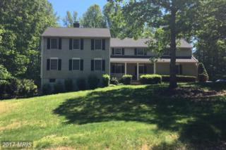 225 Longwood Drive, Stafford, VA 22556 (#ST9953731) :: Pearson Smith Realty