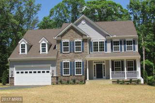 2 Cranes Bluff Court, Fredericksburg, VA 22405 (#ST9953805) :: Pearson Smith Realty