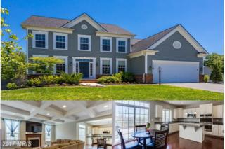 98 Coachman Circle, Stafford, VA 22554 (#ST9954156) :: Pearson Smith Realty