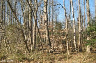 Wood Landing Road, Fredericksburg, VA 22405 (#ST9955523) :: Pearson Smith Realty