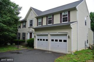 78 Basalt Drive, Fredericksburg, VA 22406 (#ST9956071) :: Pearson Smith Realty