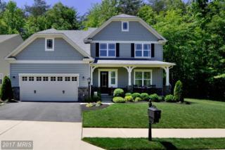 19 Wagoneers Lane, Stafford, VA 22554 (#ST9956198) :: Pearson Smith Realty