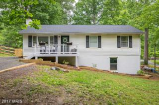 51 Hidden Lake Drive, Stafford, VA 22556 (#ST9956298) :: Pearson Smith Realty