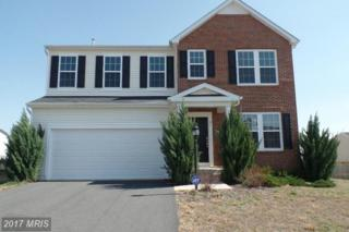 41 Charter Gate Drive, Fredericksburg, VA 22406 (#ST9956929) :: Pearson Smith Realty